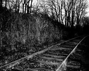 "Pasquale Calone ""rails"""